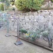 お庭の掃除他