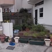 庭の手入れ完了