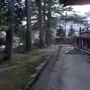 屋根とお寺のお掃除