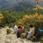 お寺での秋の大祭